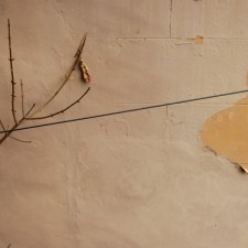 http://studiowolkowicz.com/files/gimgs/th-15_wall-cable-tree.jpg